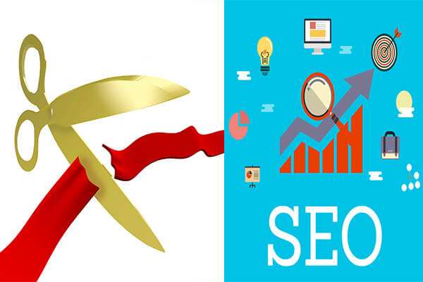 SEO for New Business